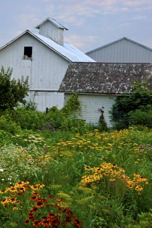 Amish Wildflower Garden, Fort Wayne, IN