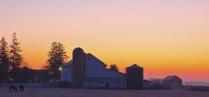 Winter Sunrise on Indiana Farm, Fort Wayne, IN